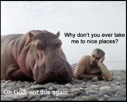 Fed Up Hippo by Doomsday-Device
