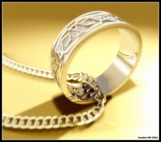 Ring by SanderWit