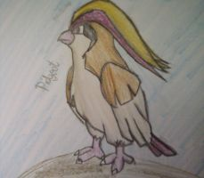 018 - Pidgeot by pokefan444