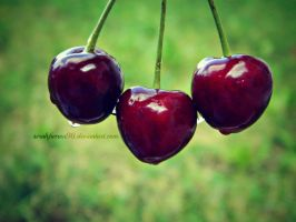 Cherries by Selenaru96