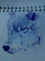 Blue Wolf by ShadowJMC