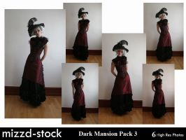 Dark Mansion Pack 3 by mizzd-stock