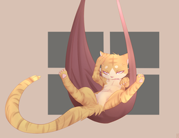 cats cradle nap by phation