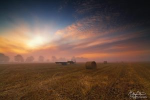Dawn Harvest by MikeFShaw