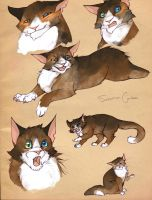 Sebastian - Cat sketches by cursed-sight
