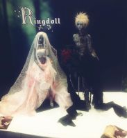 Some pics of the PNW BJD expo 2013 1 by Ringdoll