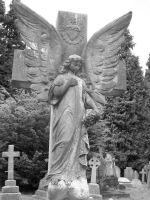 Angel Gravestone Stock by XerStock