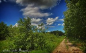 Hungarian landscapes. HDR-picture (soft) by magyarilaszlo