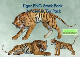 Tiger PNG Stock Pack by Roys-Art