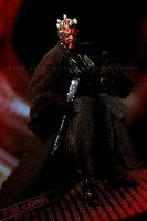 Fear is My Ally - Darth Maul 02 by aliasangel2005