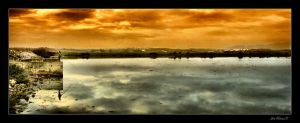 The Parallel Worlds by Inebriantia