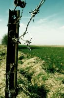 barbed wire by ah-mes-lits