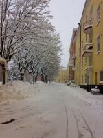 And winter came.. by vonderwall