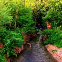 The Creek 5 by Aivaseda