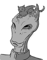 Salarians wear kittens, didn't you know by Infiltrait0r-N7