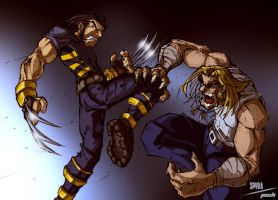 X2 Wolverine VS Sabertooth by dcjosh