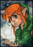 Heey Link by XMenouX