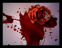 dead rose by Janina-Photography