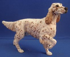 Phoenix- English Setter by Tephra76