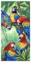 A Parrot Party by SpaceTurtleStudios