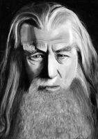 Gandalf the Grey by cconnell