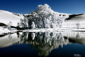 Montusi Infrared Views - Reflections by Okavanga