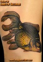 Goldfish by asussman