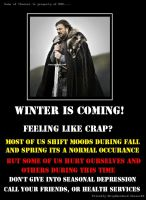 Winter is Coming Game of Thrones Public Service by kharec84