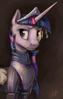 BattleTwi by SilFoe