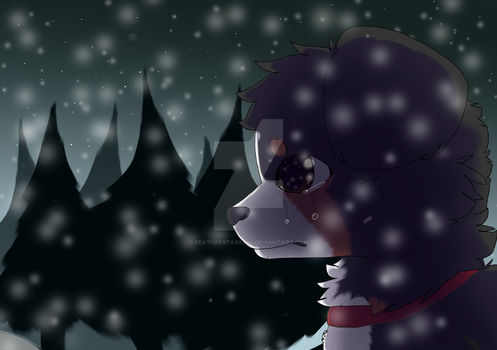Lost in the Snow by FeatherStar8000