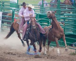 Rodeo 2015-1 by Lonewolf-Eyes