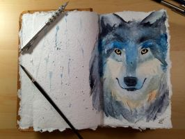 Watercolor Wolf  by TopazBlitz
