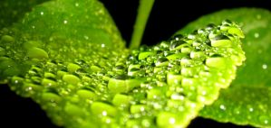 Droplets by Declan11