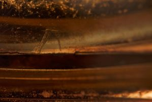 Abstract macro by Spiteful-Spirit