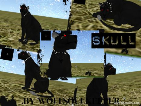Skull Preset 4 of 9 by WolfSoulKeeper