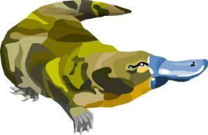 Camouflage Platypus by trancor