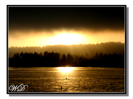 Hood Canal Sunrise by WillFactorMedia