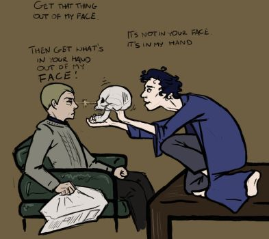Sherlock, John and The Skull by irmelindisallow