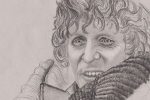 4th Doctor Tom Baker 06 by rhizin