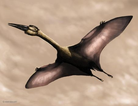 Quetzalcoatlus by Lythroversor