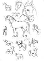 Horse Practice Sheet 1 by Berende