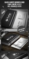 Black and White Business Card by VadimSoloviev