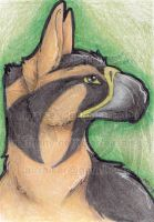 ATC: Gryphon 2013 by AirRaiser