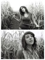 Cornfield by StolenSecrets