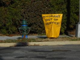 Hydrant Out of Service by Urceola