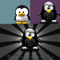 Pack wallpapers Tux by invhizible