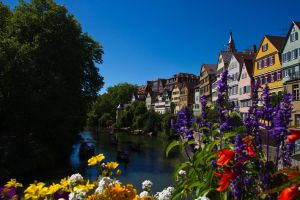 Romantic Neckar by DeviantTeddine