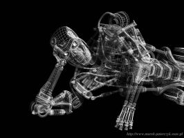Terminator Wireframe by paterczm