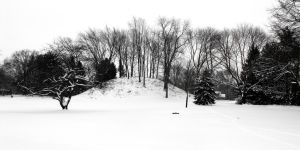 Jeffers Mound in the Snow by Steventon