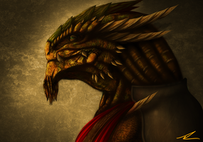 Rimas the Dragonborn by FuShark